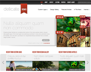 wordpress premium themes