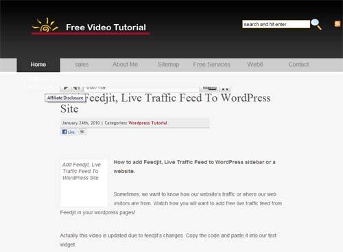 why premium wordpress themes
