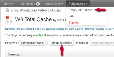 wordpress feed not updating