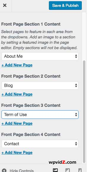 Theme options where you can find sections