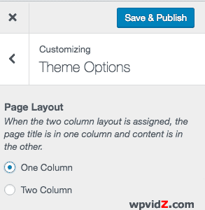 Twenty Seventeen theme has one column as a page option